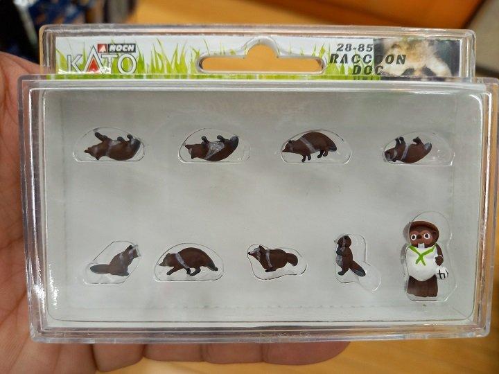 タヌキ.jpg