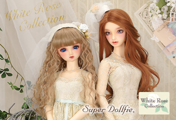 White Rose Collection